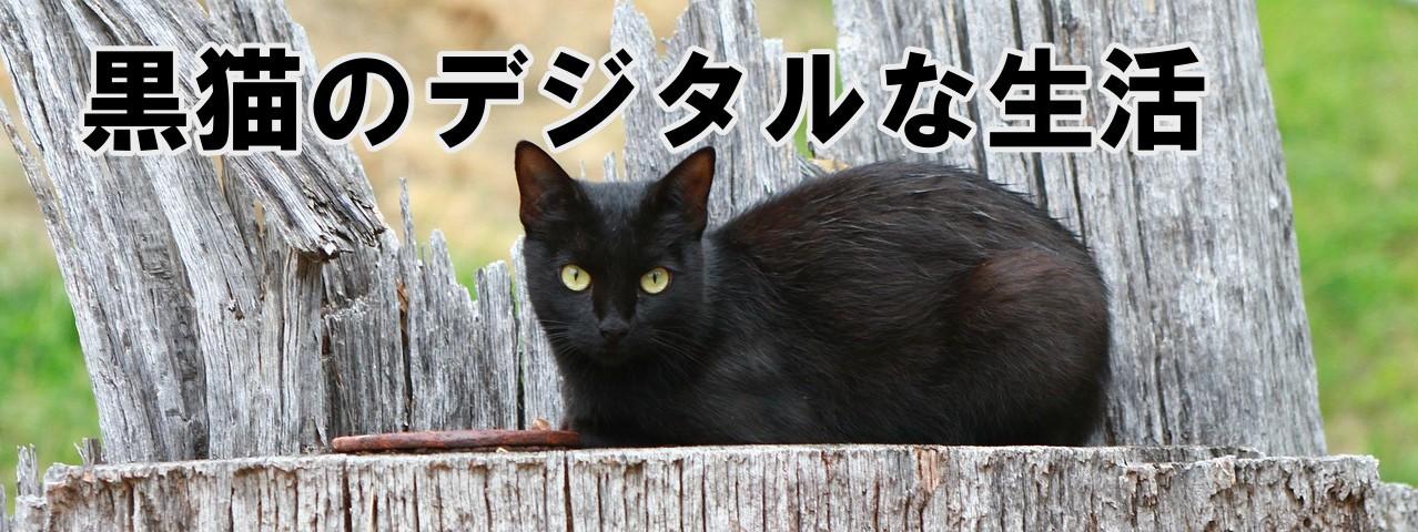 黒猫のデジタルな生活